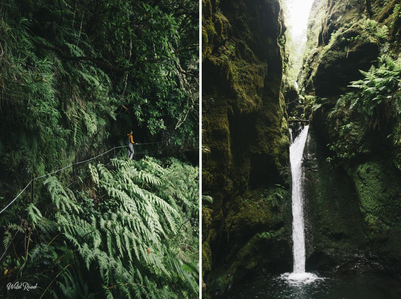 Caldeirao Verde Madeira