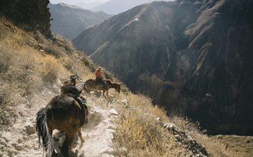 Canyon de Colca randonnée Pérou