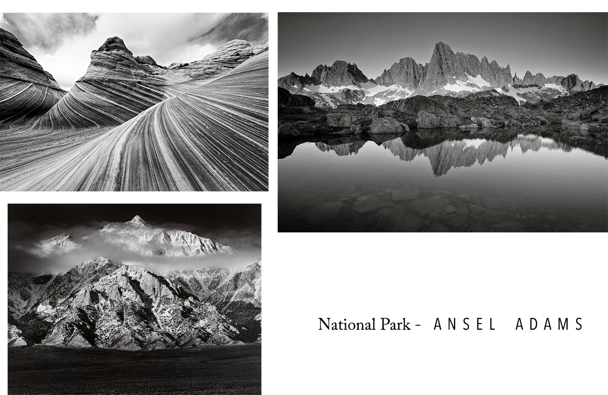 Ansel Adams National park