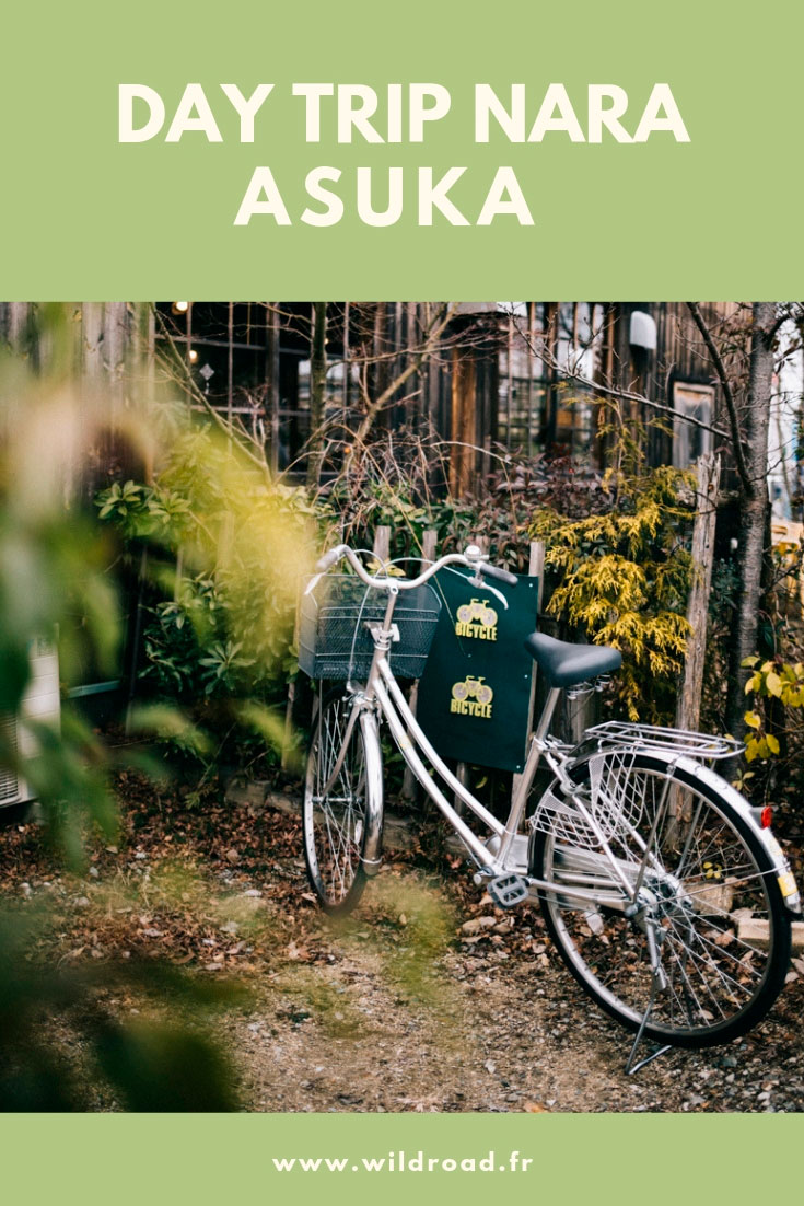 Day trip depuis nara city dans le village d'Asuka