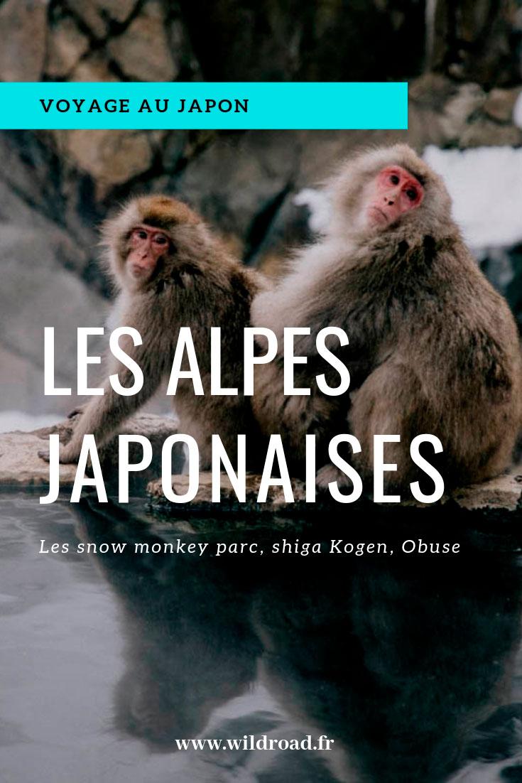 alpes japonaises obuse nagano shiga kogen Japon