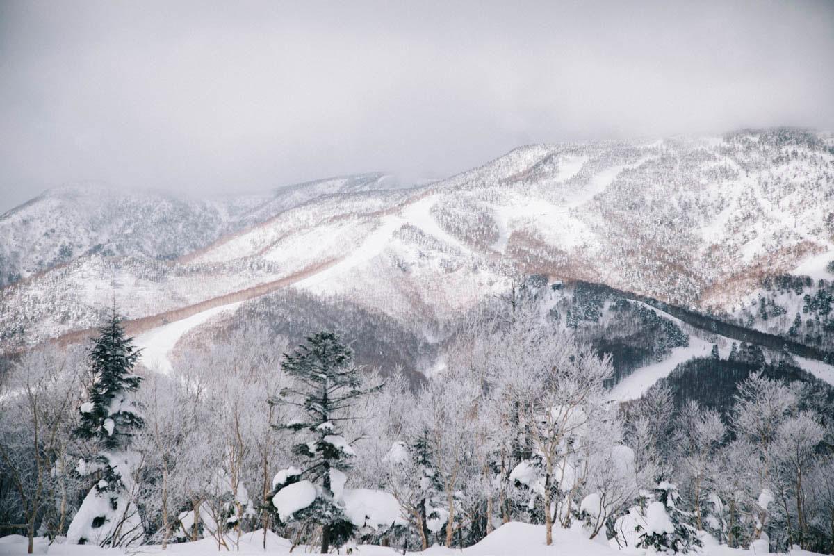 alpes japonaises station ski shiga kogen nagano
