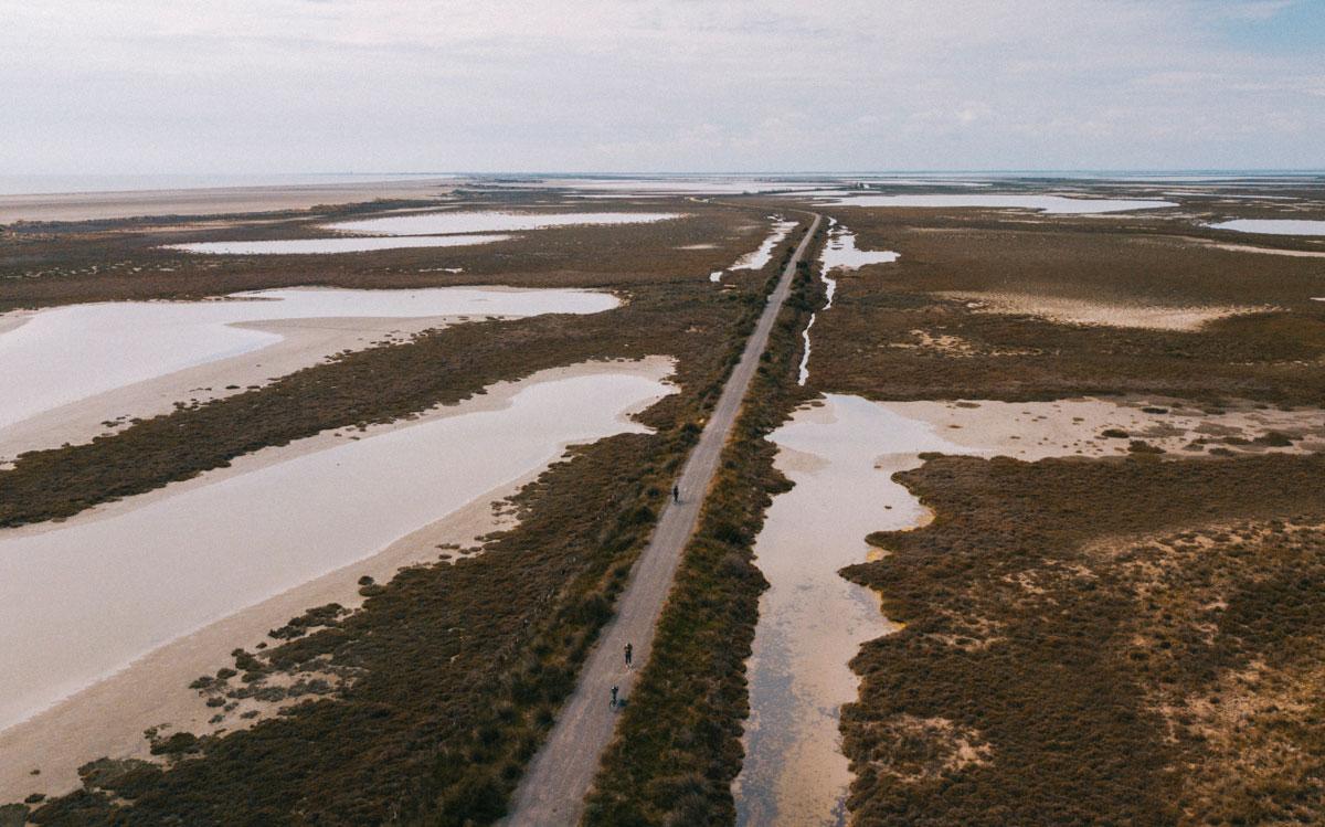 Sentier de randonnée la digue à la mer en Camargue dans le parc naturel régional