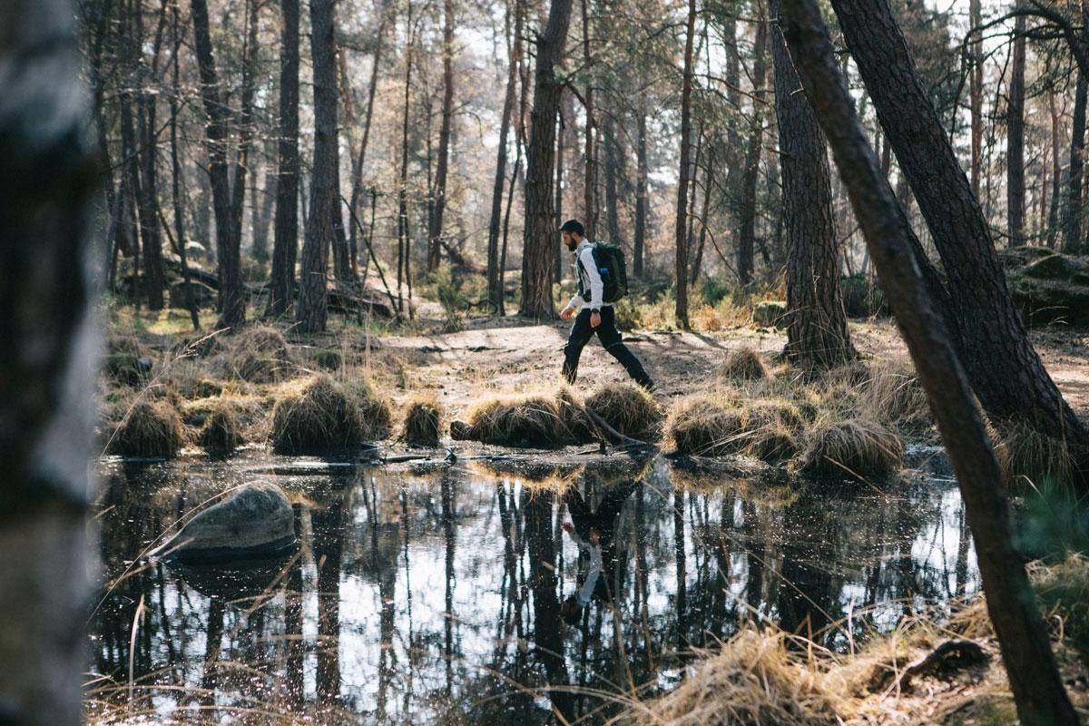 La mare du Piat, Forêt de fontainebleau, Randonnée