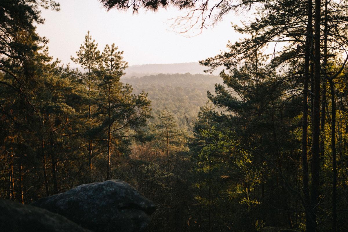 Randonnée gorges d'Apremont forêt de fontainebleau