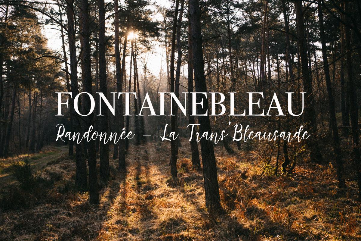 Randonnée de la Trans'Bleausarde Fontainebleau
