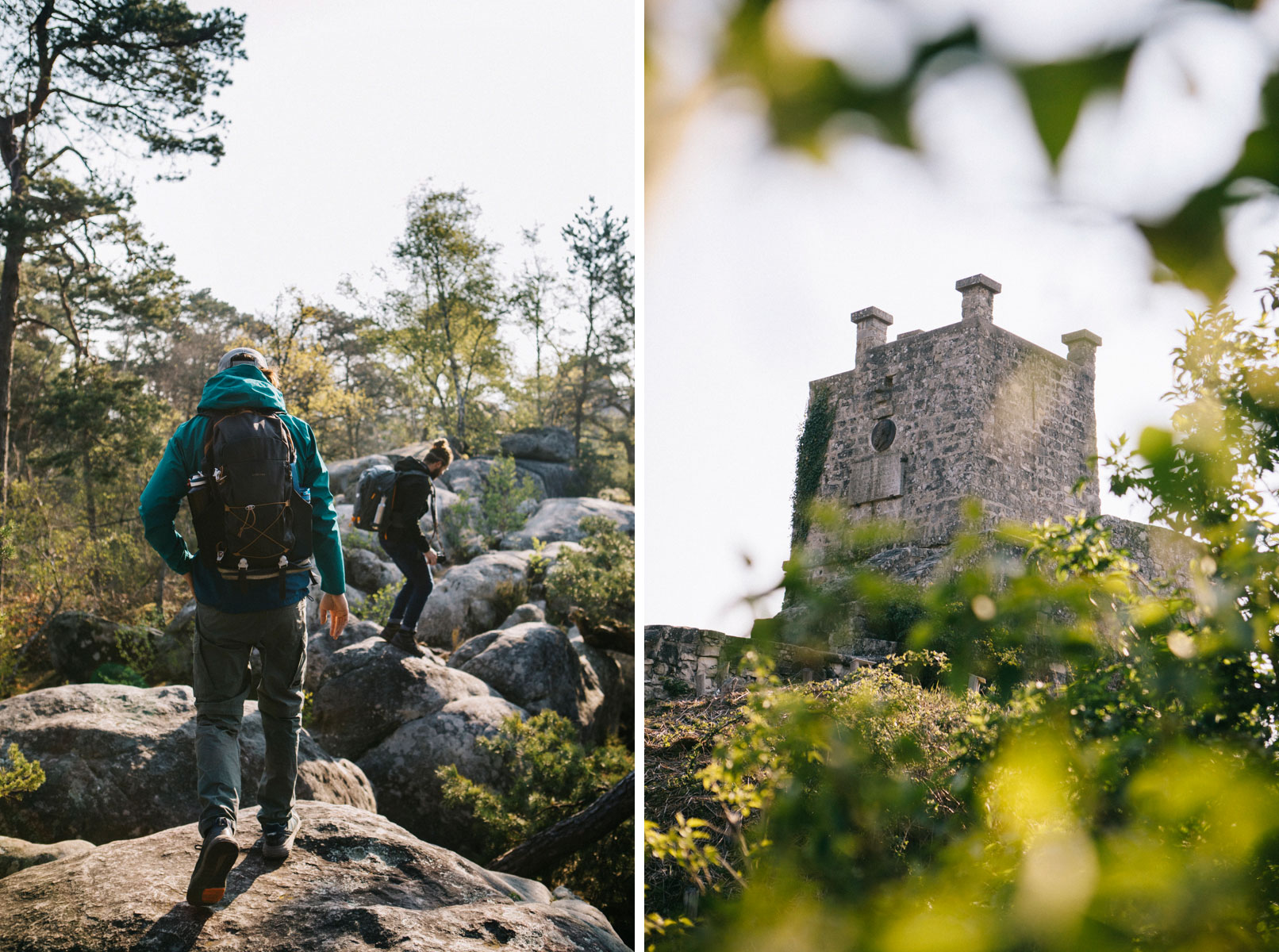 La tour de denon court sur le sentier du même nom dans la forêt de fontainebleau
