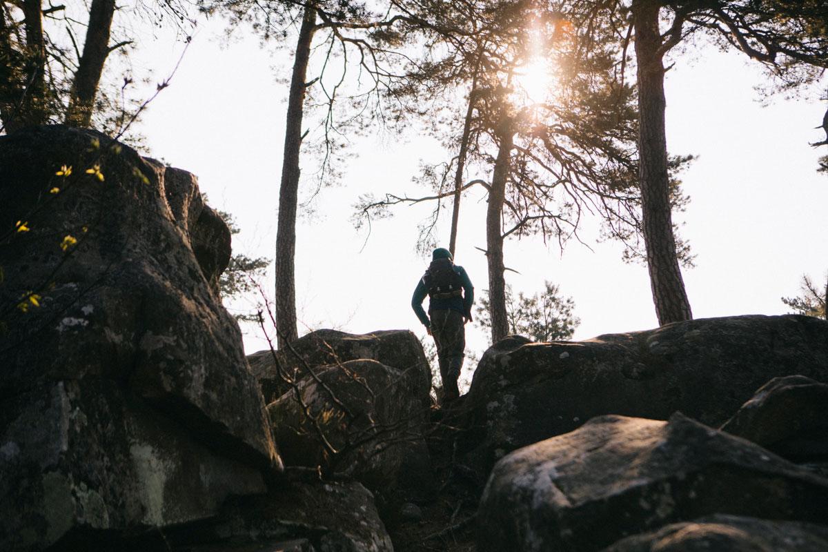 Randonnée dans la forêt de fontainebleau sur le sentier Denoncourt