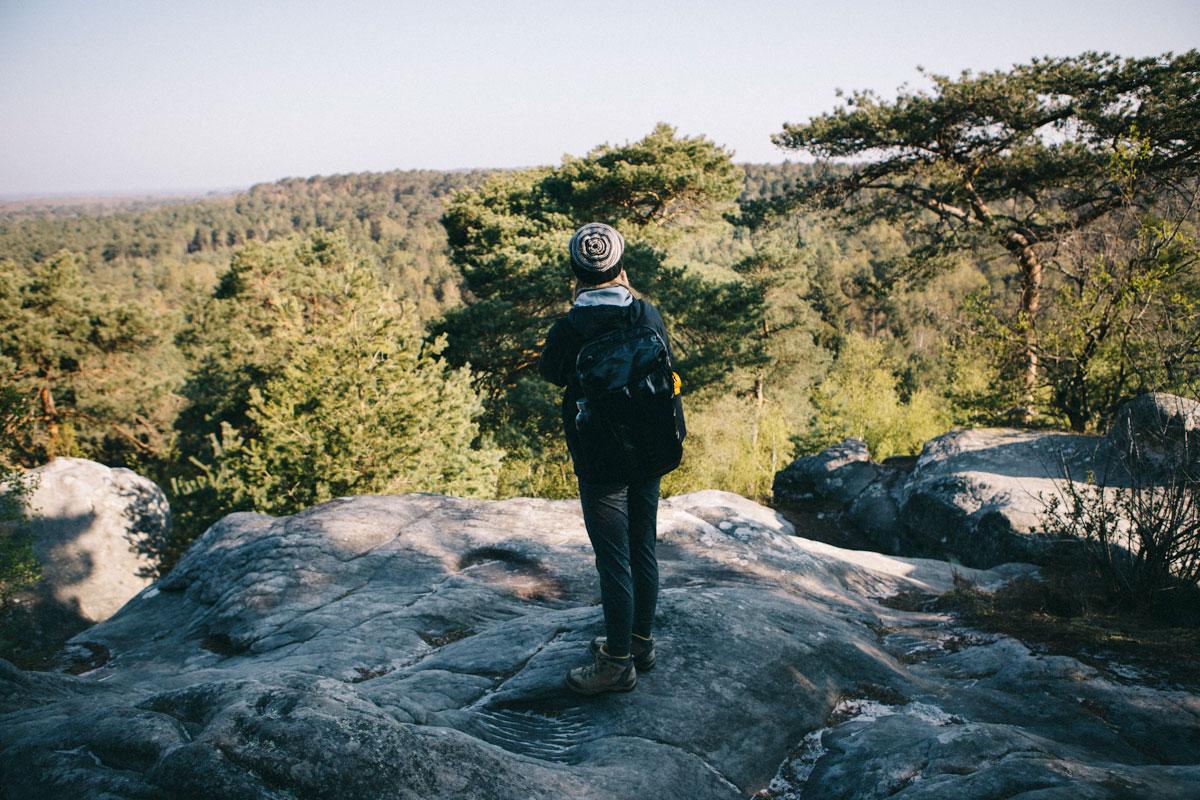 Point de vue Forêt depuis les gorges du franchir