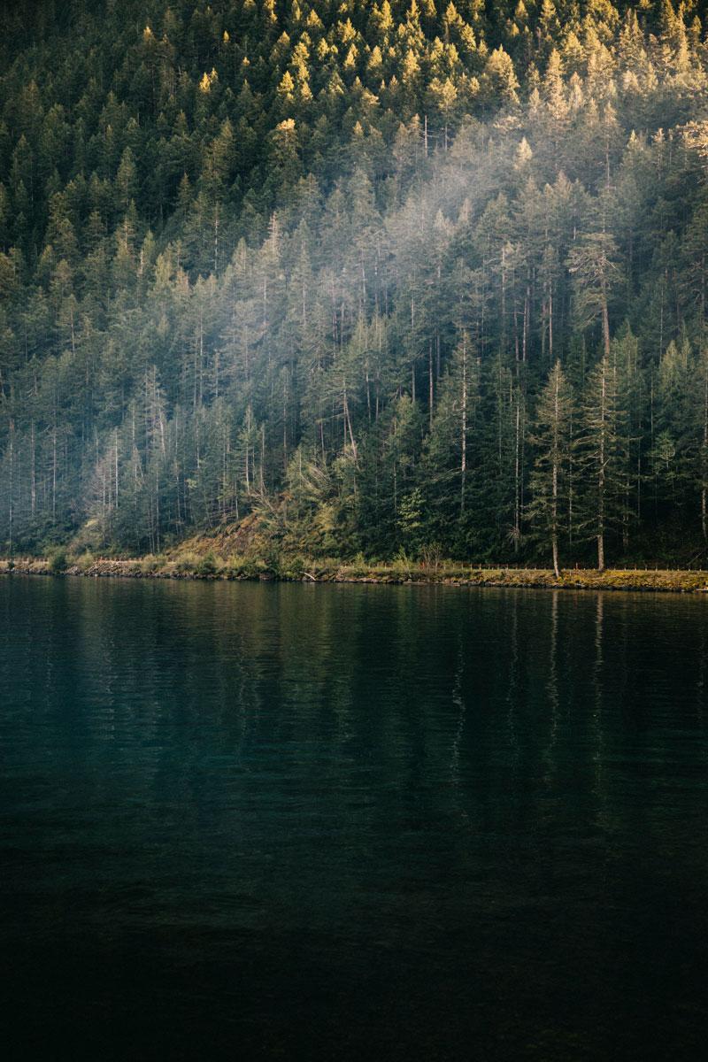 peninsule Olympique brume lake crescent