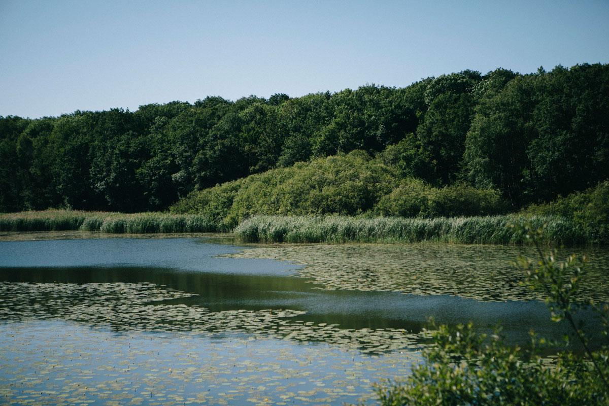 les étangs de Hollande