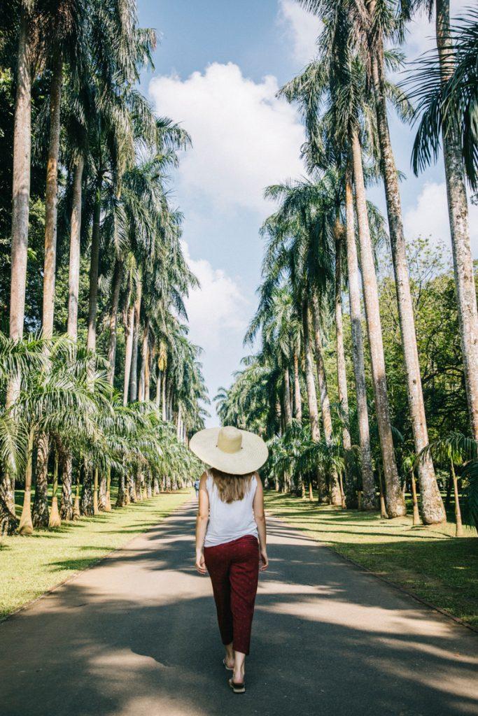 promenade dans le jardin botanique