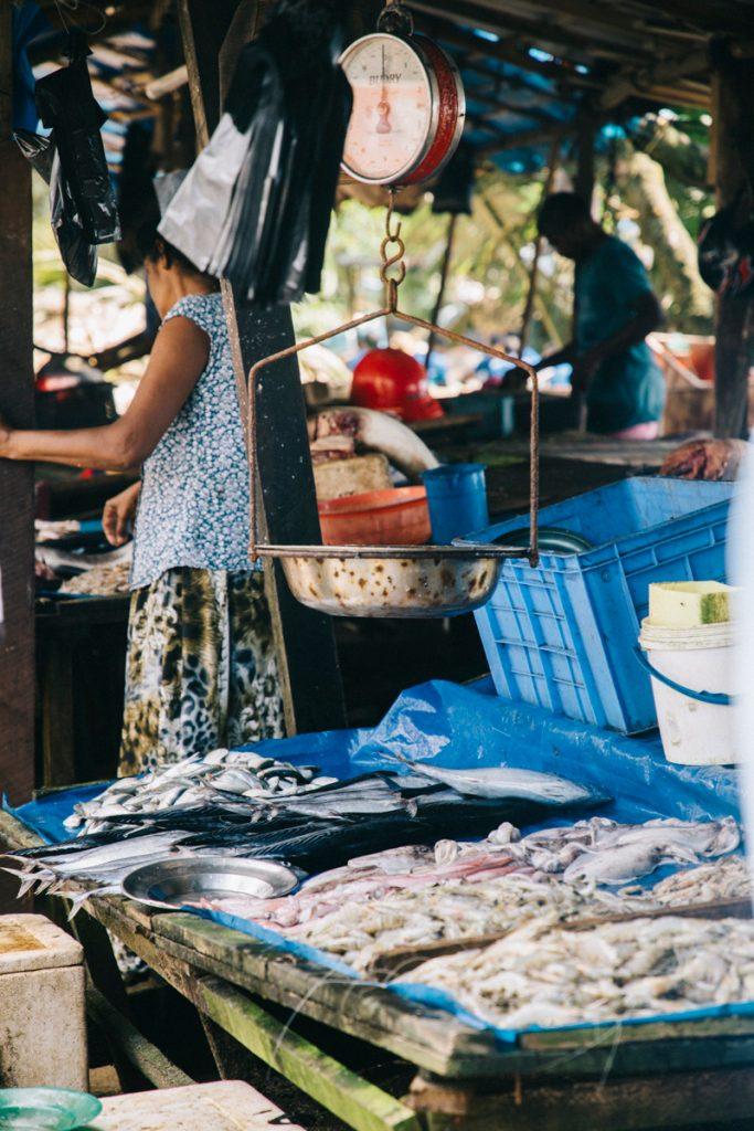 le marché aux poissons de Galle