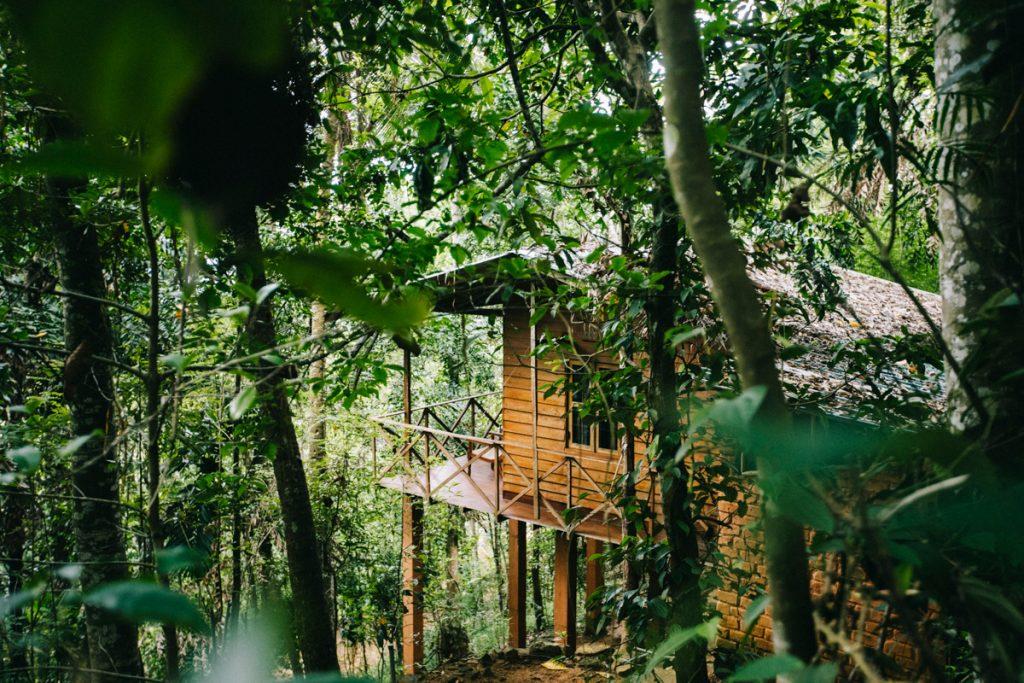 toruve run Ecolodge pour son voyage au Sri Lanka