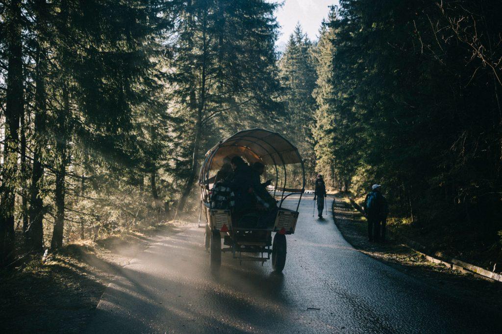 les calèche pour les touristes sur le sentier du lac Morskie Oko