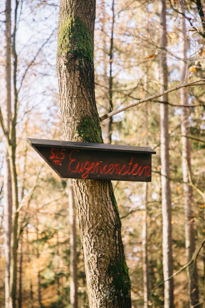 sentier de randonnée pour une journée dans le parc national d'Eifel