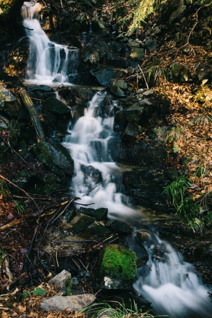 cascade le long du chemin dans la forêt domaniale de Guebwiller