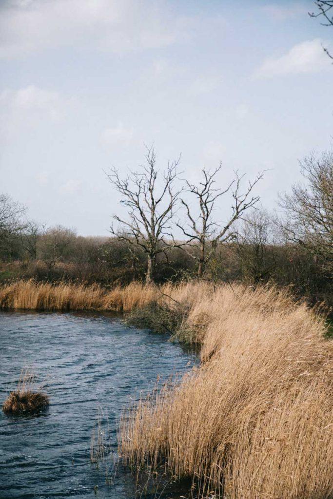 Les étangs du parc régional de la Brenne dans le Berry pour un week-end nature. crédit photo : Clara Ferrand - blog Wildroad