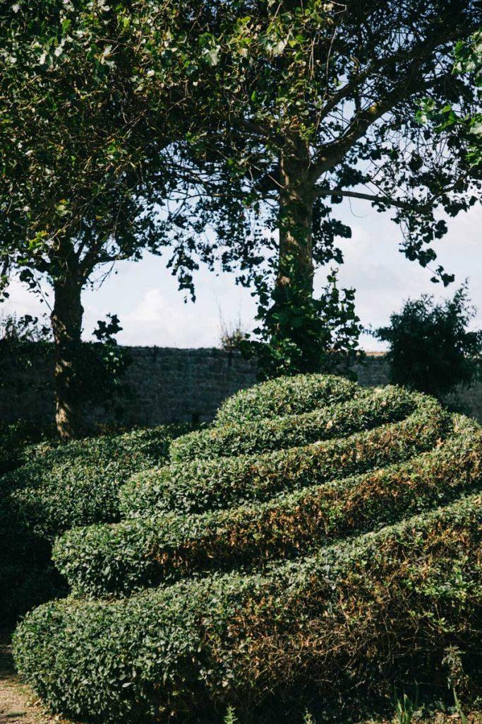 Le jardin botanique lors d'une visite sur l'île de Tatihou en Normandie. crédit photo : Clara Ferrand - blog Wildroad