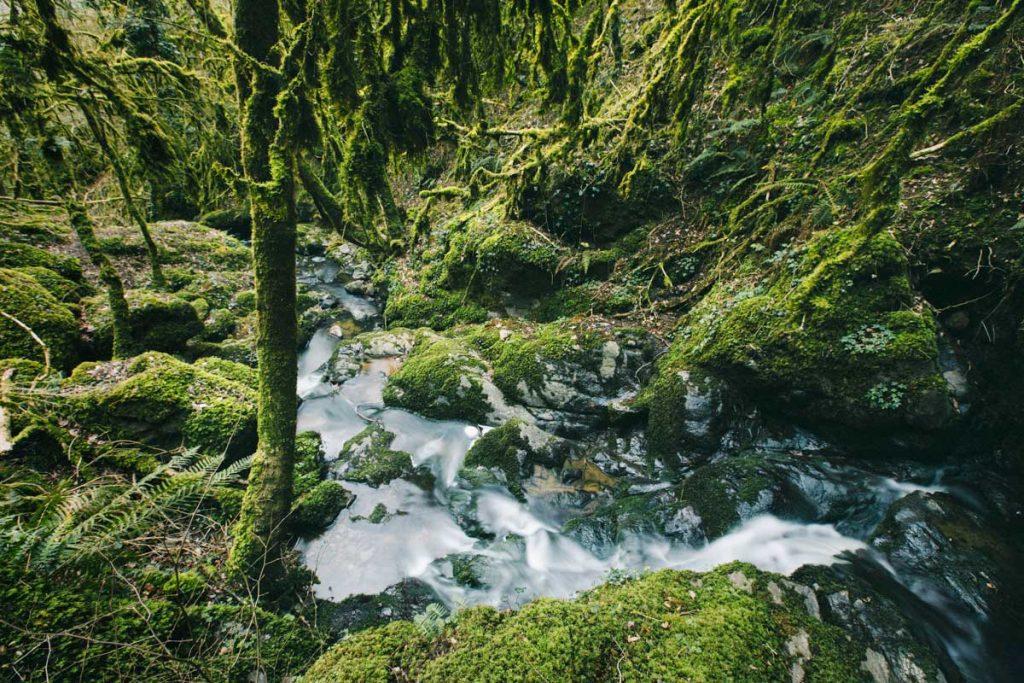 Un coin enchanteur caché dans le Berry : la cascade de Chatillon. crédit photo : Clara Ferrand - blog Wildroad
