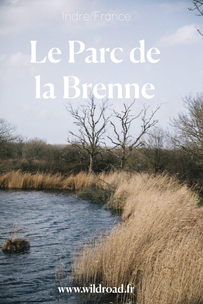 Passer un week-end à observer les oiseaux dans le parc régional de la Brenne dans le Berry. crédit photo : Clara Ferrand - blog Wildroad #berry #parcdelabrenne #weekend #france #indre