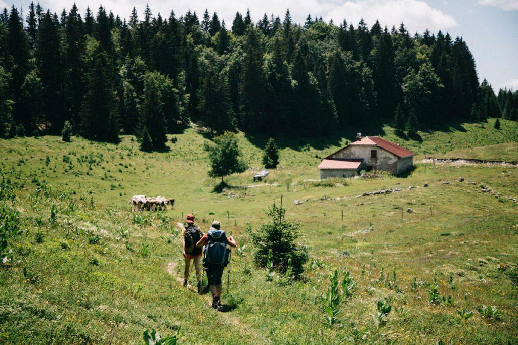 La combe aux chevre dans le parc naturel régional du Haut-Jura. crédit photo : Clara Ferrand - blog Wildroad