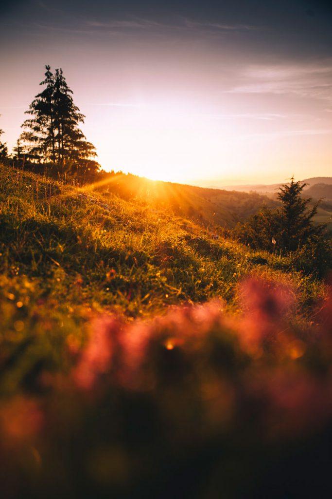 randonner dans le massif du Jura pendant 4 jours. crédit photo : Clara Ferrand - blog Wildroad