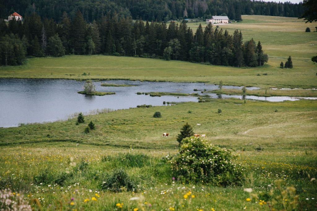 Le lac de bellifontaine dans le massif du Jura. crédit photo : Clara Ferrand - blog Wildroad