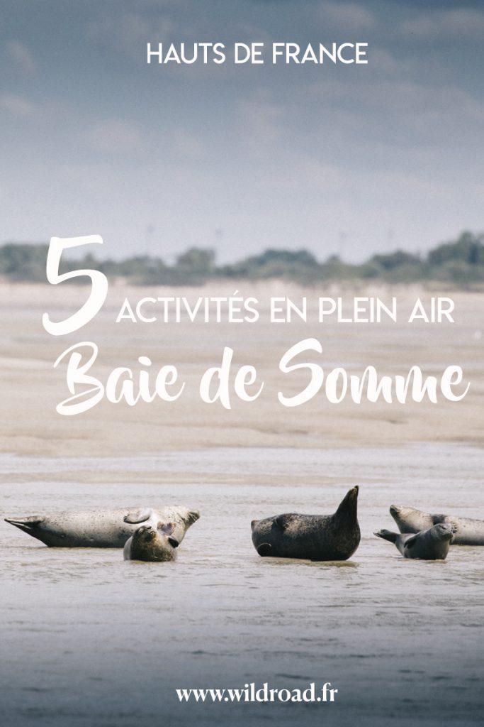 5 activités en plein air à faire lors d'un week-end en Baie de Somme autour du Crotoy. crédit photo : Clara Ferrand - blog Wildroad #hautsdefrance #baiedesomme #picardie #phoque #parcdumarquenterre #randonnee #hiking