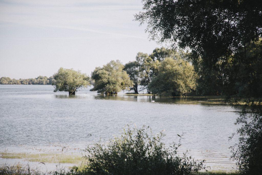 Le lac du temple dans le parc naturel régional de la forêt d'Orient aux alentours de Troyes. crédit photo : Clara Ferrand - blog Wildroad