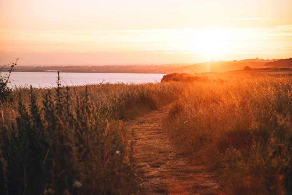 Le sentier du littoral une randonnée incontournable de la baie de Somme. crédit photo : Clara Ferrand - blog Wildroad