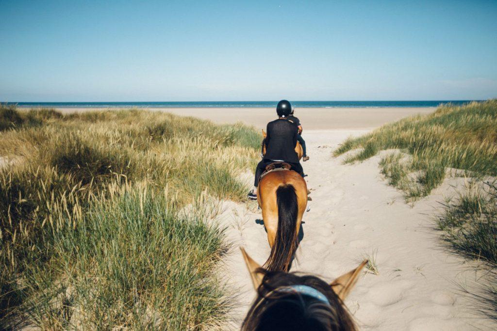 Balade à cheval sur la plage dans la baie de Somme. crédit photo : Clara Ferrand - blog Wildroad