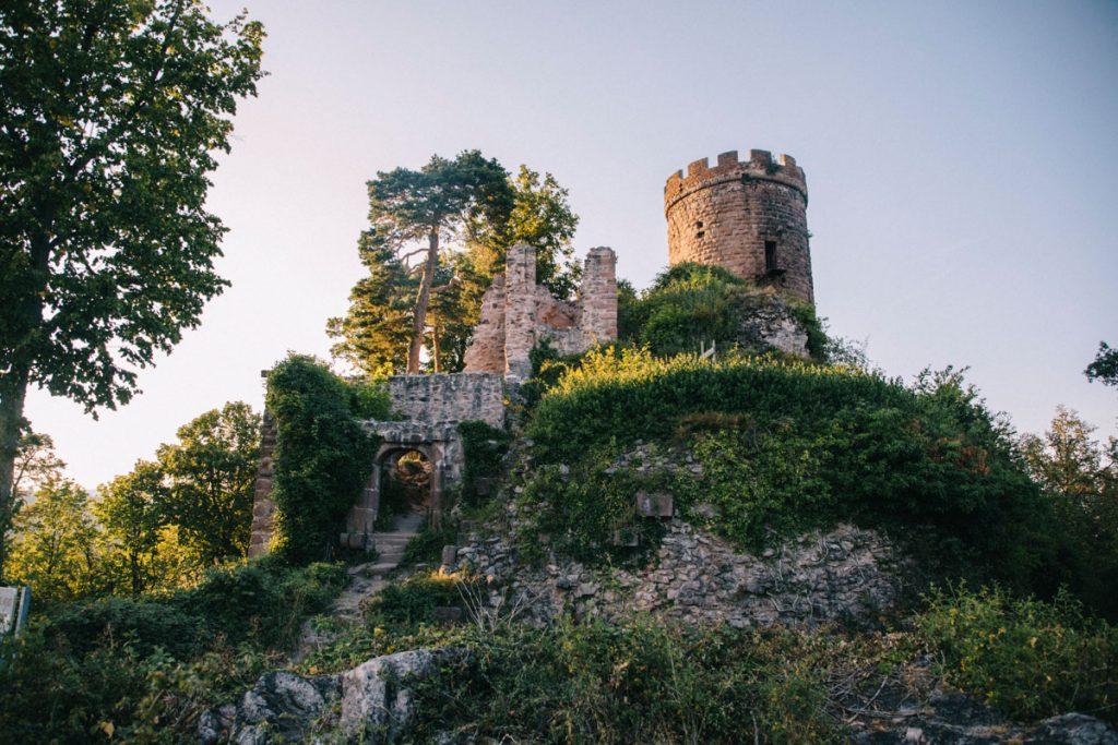 Faire la randonnée de Ribeauvillé jusqu'au château de ribeaupierre. crédit photo : Clara Ferrand - blog Wildroad