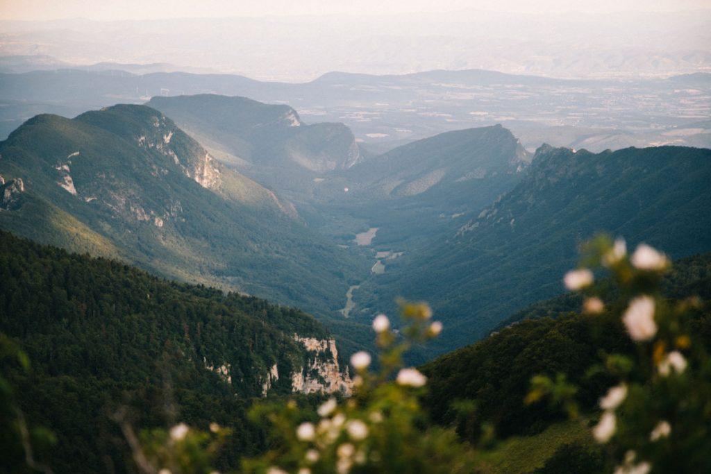 Le synclinal de la forêt de Saou dans la Drôme. crédit photo : Clara Ferrand - blog Wildroad