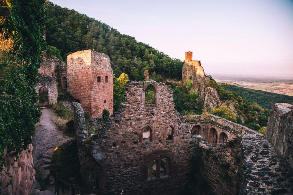 Randonnée incontournable du massif des Vosges : les 3 châteaux de Ribeauvillé. crédit photo : Clara Ferrand - blog Wildroad
