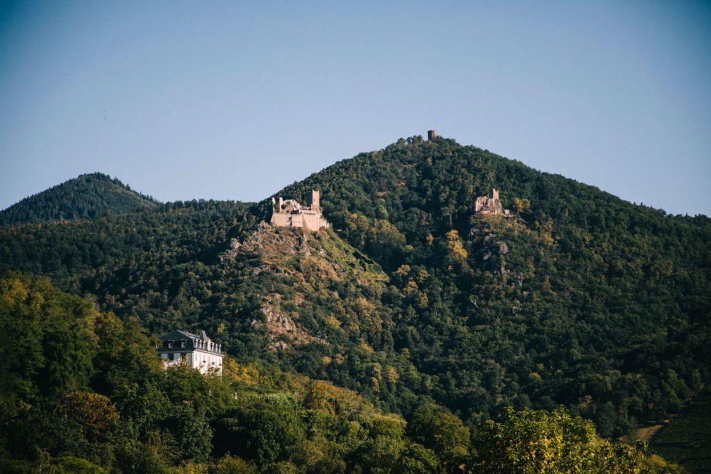 Les 3 châteaux de Ribauvillé vue depuis le bas du village en partant vers riquewhir. crédit photo : Clara Ferrand - blog Wildroad