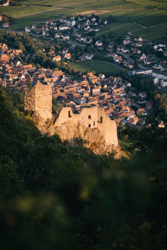 Le château de Girsberg au dessus de Ribeauvillé en Alsace dans le massif des Vosges. crédit photo : Clara Ferrand - blog wildroad