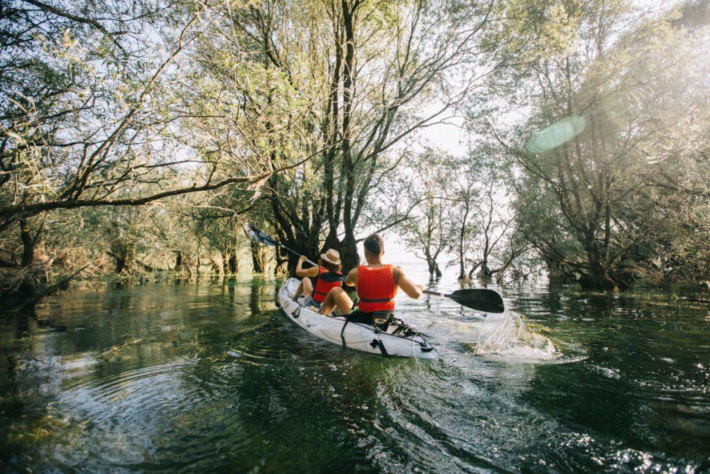 Sortie en canoë dans la foret immergée sur les lacs de la forêt d'Orient. crédit photo : Clara Ferrand - blog Wildroad