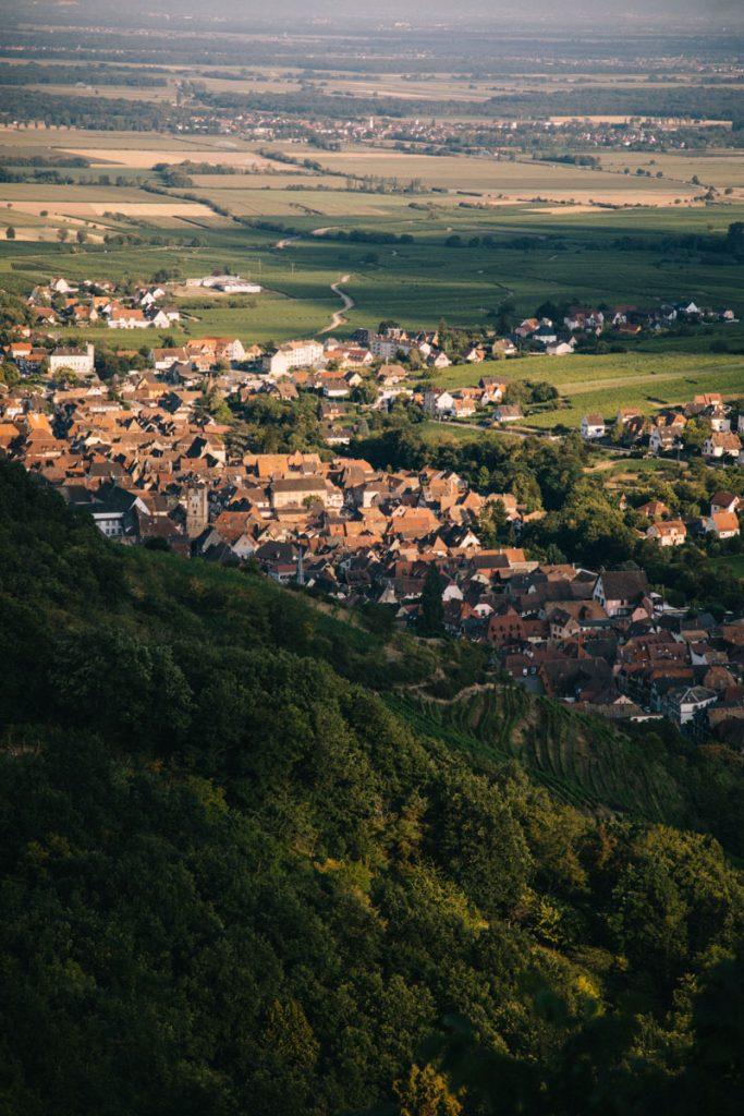 La vue sur Ribeauvillé depuis le panorama des 3 châteaux. crédit photo : Clara Ferrand - blog Wildroad