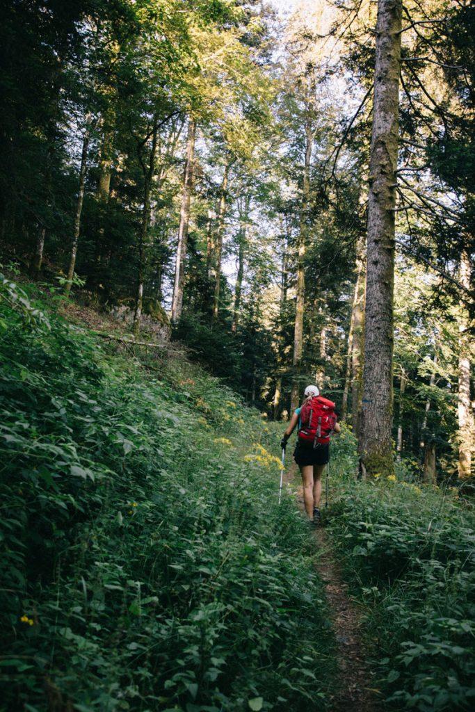 Le sentier de randonnée itinérante de la grande traversée des vosges. crédit photo : clara Ferrand - blog Wildroad