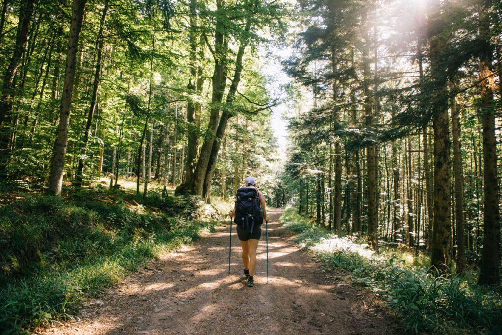 Quelle randonnée faire pour de l'itinérance dans le massif des Vosges ; le sentier du GR5 à partir de Thann. crédit photo : Clara Ferrand - blog Wildroad