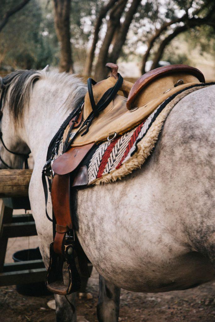 Faire une balade à cheval autour de Bonifacio en Corse. crédit photo : Clara Ferrand - blog Wildroad