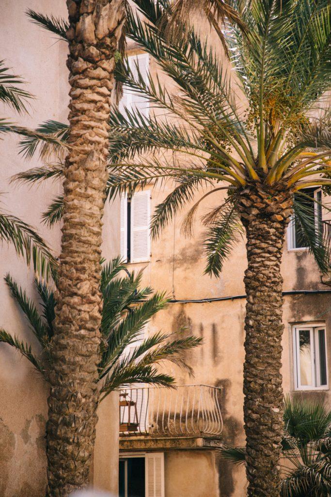 La haute-ville de Bonifacio et ses ruelles à l'architecture génoise. crédite photo : Clara Ferrand - blog Wildroad