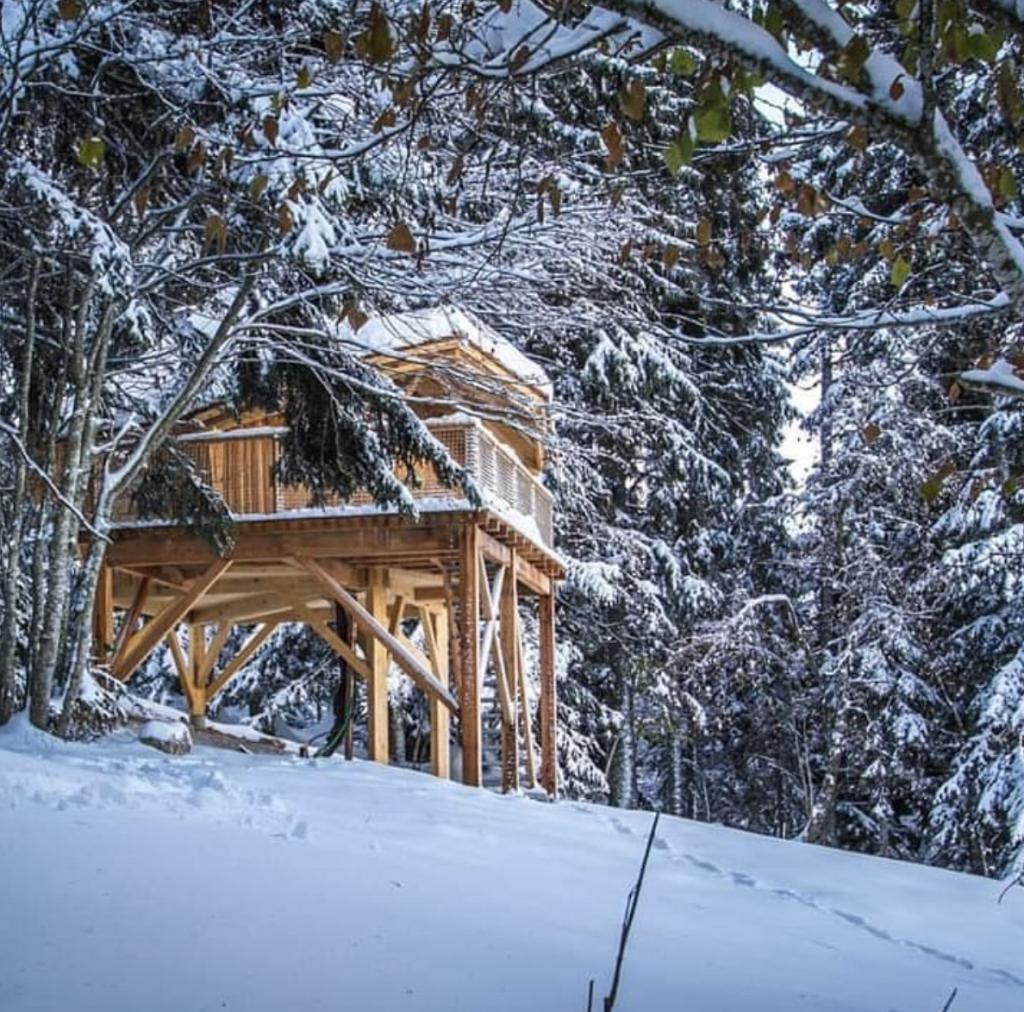 Une nuit dans une cabane perchée en Savoie, Les cabanes chartreuse insolite, à partir de 140 euros la nuit