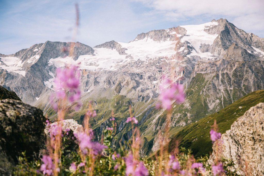 Panorama sur les glaciers de la Vanoise depuis le refuge de Plaisance. crédit photo : Clara Ferrand - blog Wildroad