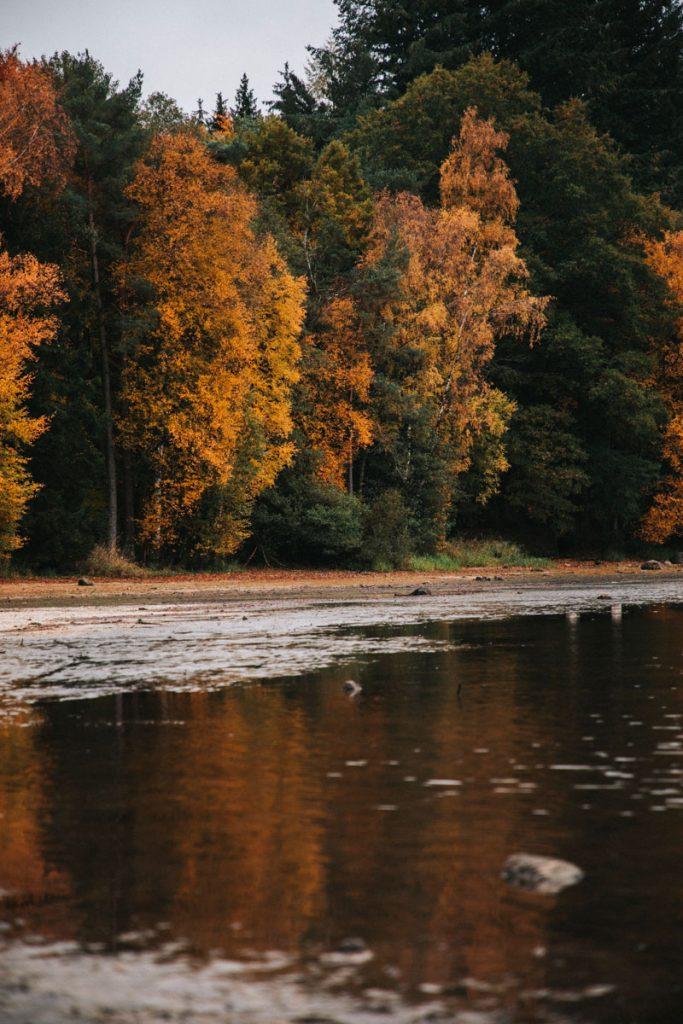 Les couleurs automnale au lac des Settons dans le Morvan. crédit photo : Clara Ferrand - blog Wildroad