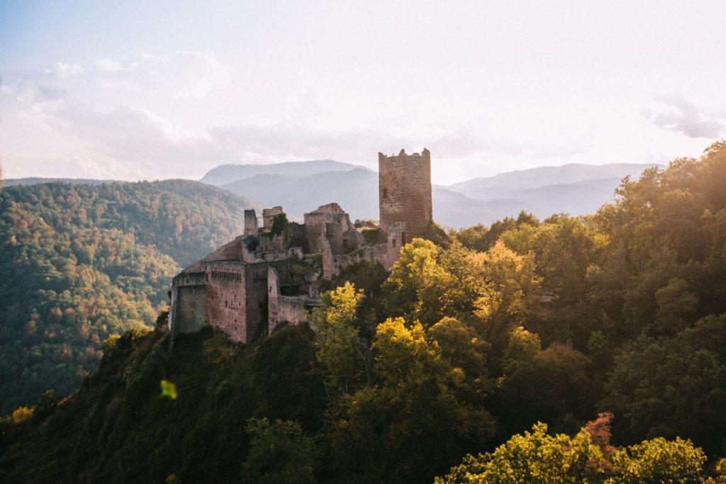 La randonnée de s3 châteaux de Ribeauvillé. crédit photo : Clara Ferrand - blog Wildroad