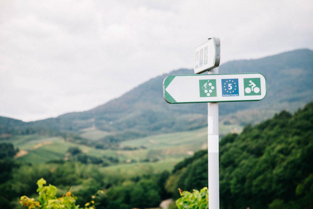 Le balisage de l'itinéraire de la route des vins en Alsace à vélo. crédit photo : Clara Ferrand - blog Wildroad