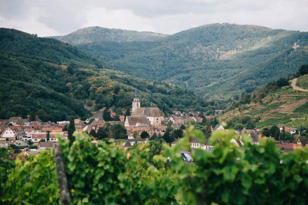 les villages alsacien sur la véloroute du vignoble un itinéraire à vélo. crédit photo : Clara Ferrand - blog Wildroad
