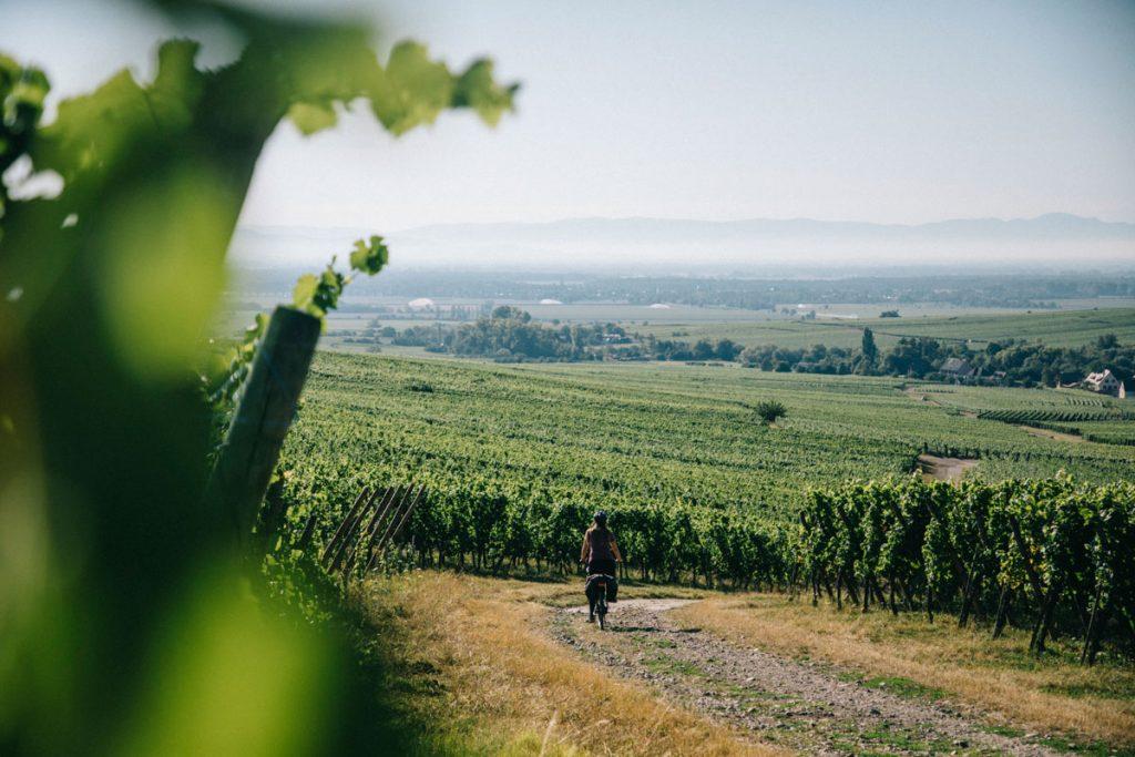 Quel itinéraire choisir pour débuter en cyclotourisme en Alsace? crédit photo : Clara Ferrand - blog Wildroad